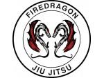 Firedragon - Anerkannte Kampfsportschulen