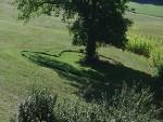 Das Herz in der Wiese - bei Glatzau - Tagendorf