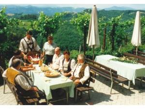 Weingut Buschenschank Maier vlg. Winkelbauer