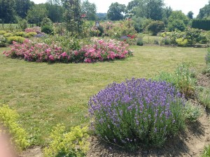 Klimaschutzgarten Gosdorf