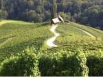 Südsteiermark Urlaub beim Wein