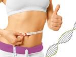 Die Gene und Übergewicht