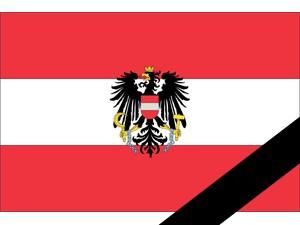 Die neue Parteienförderung ist der Gnadenschuss für mehr Demokratie in Österreich!