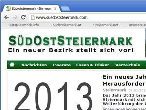 Der neue Bezirk Südoststeiermark im Internet